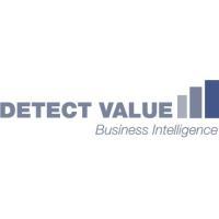 Detect Value GmbH Logo