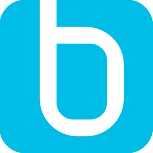 Bosenet Systemhaus GmbH & Co KG Logo