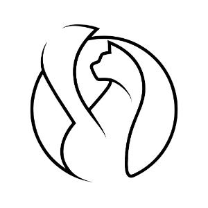 Paradox Cat GmbH Logo