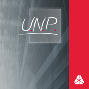 U.N.P.-Software GmbH Logo